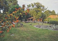 Het boerderijterras is in de zomerperiode dagelijks geopend van 10.00 - 17.00 uur.